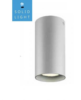 SURFACE CEILING LIGHTING FIXTURE P17