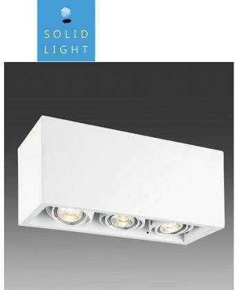 SURFACE CEILING LIGHTING FIXTURE P23