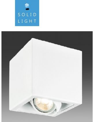 SURFACE CEILING LIGHTING FIXTURE P22