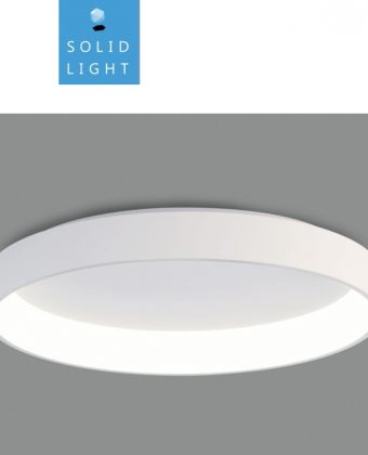 SURFACE CEILING LIGHTING FIXTURE P18