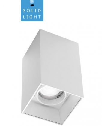 SURFACE CEILING LIGHTING FIXTURE P19